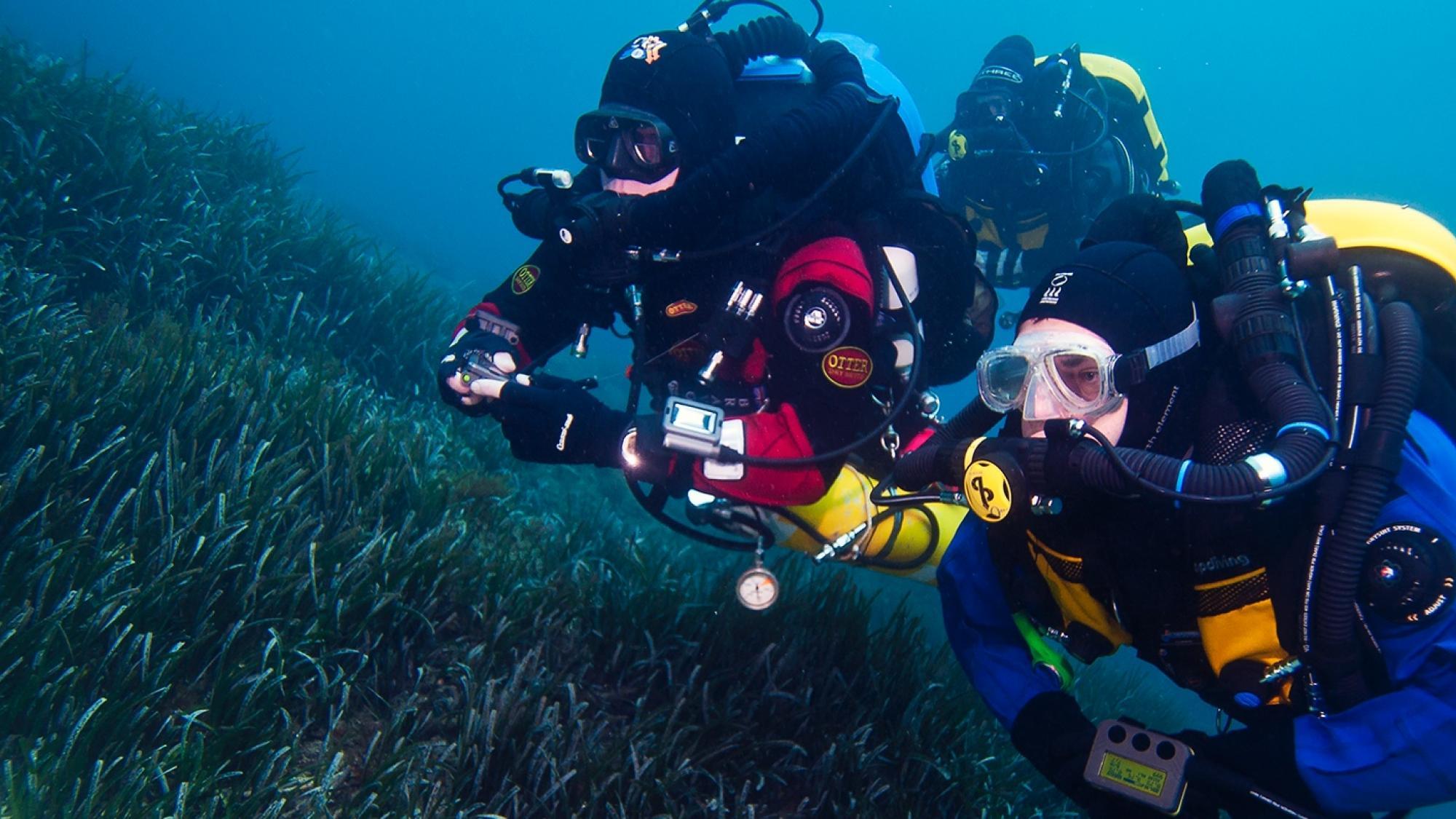 Advanced Rebreather Diver